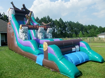Inflatable Wild Rapids Wet and Dry Slide
