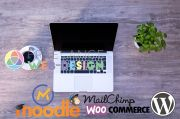 Freelance Woocomerce