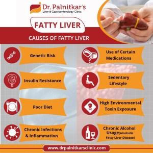 Gastroenterologist in Pune | Liver Transplantation in Pune