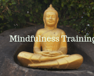 Sexual Mindfulness Book: Chapters 11 and 12; Mindfulness Training