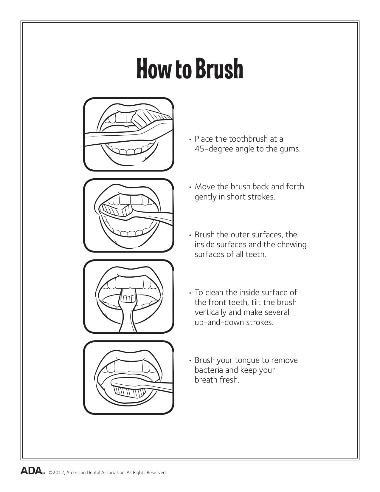 What Is The Proper Way To Brush Your Teeth