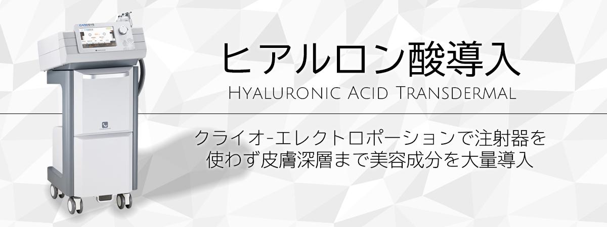 ヒアルロン酸導入 クライオエレクトロポーションで注射器を使わず皮膚深層まで美容成分を大量導入