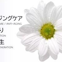アンチエイジング・若返り治療