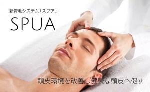 新育毛システム「スプア」頭皮環境を改善し健康な頭皮へ促す