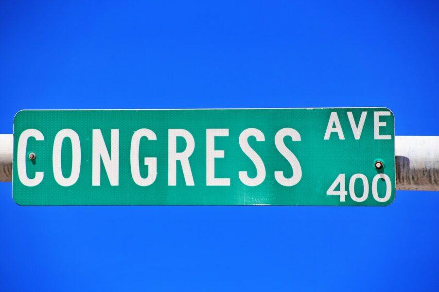 VS 2020: Congresverkiezingen
