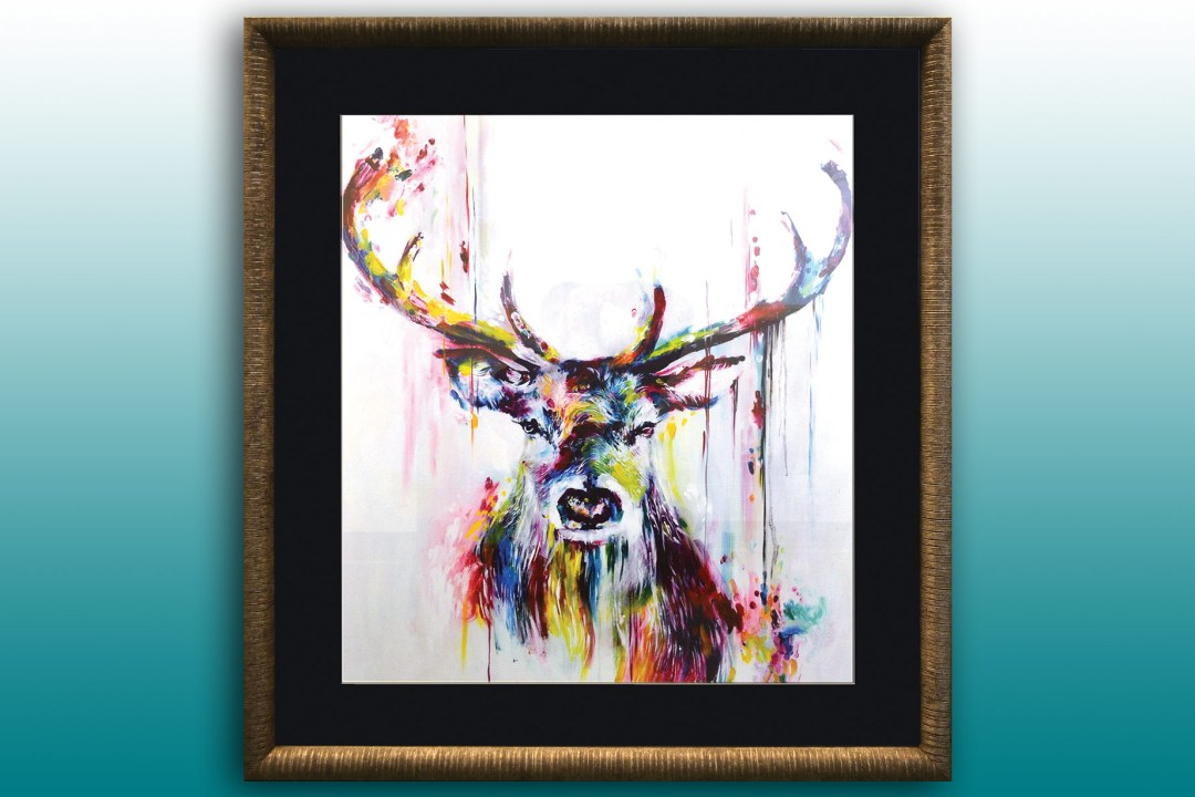 Framed artwork of a deer.