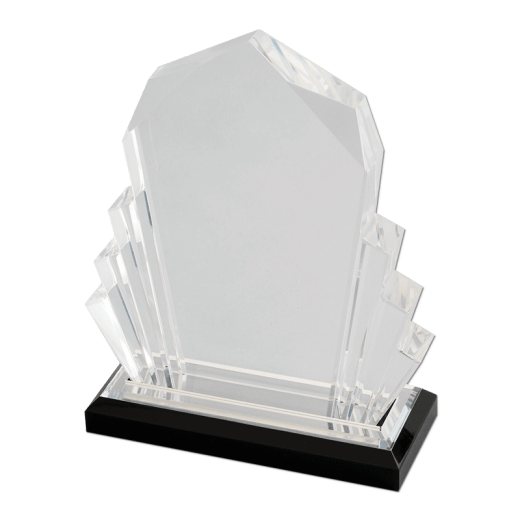 Blank silver Faceted Impress award