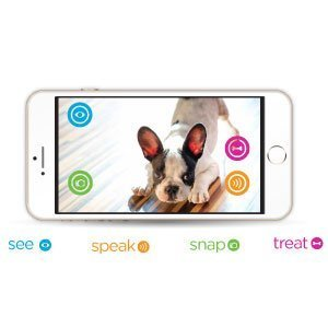 Petzi Treat Cam: WiFi Treat Dispenser for Cats and Dogs 6
