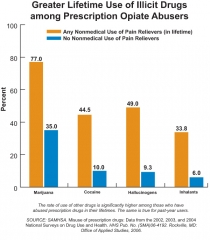 Graph: Greater Lifetime Use of Illicit Drugs among Prescription Opiate Abusers