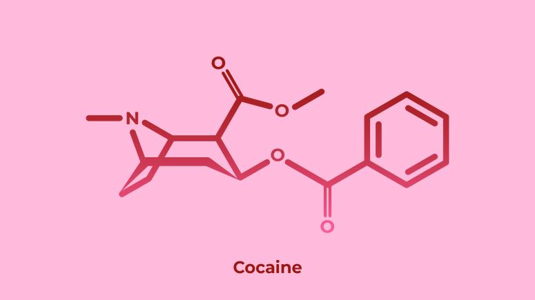 Cocaine   drugscience.org.uk