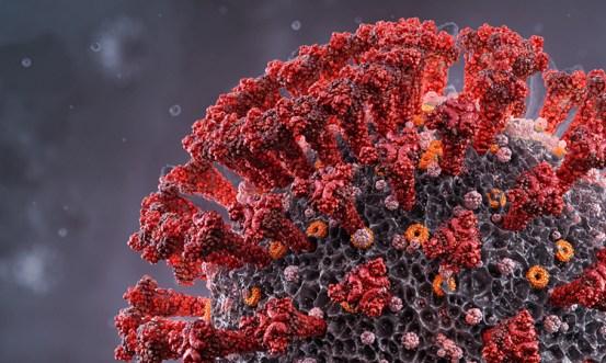 Three common antiviral drugs effective against SARS-CoV-2 in vitro
