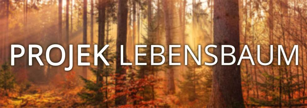 Banner Projekt Lebensbaum