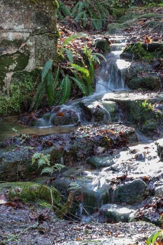Brigia eau source