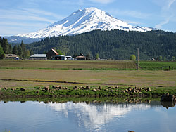 Trout Lake Abbey, 46 Stoller Rd, Trout Lake WA 98650, (509) 395-2030