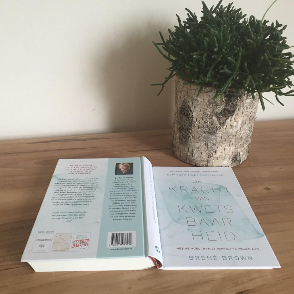 De kracht van de kwetsbaarheid - het boek