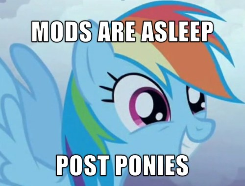 mods are asleep – POST PONIES