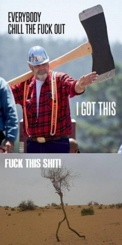 awesome lumberjack 250x500 awesome lumberjack