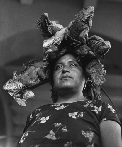 Graciela Iturbide La Nuestra Senora de las Iguanas Juchitan Oaxaca Mexico Our Lady of the Iguanas Juchitan Oxaca Mexico 1979 416x500 Graciela Iturbide, La Nuestra Senora de las Iguanas, Juchitan, Oaxaca, Mexico  Our Lady of the Iguanas, Juchitan, Oxaca, Mexico, 1979