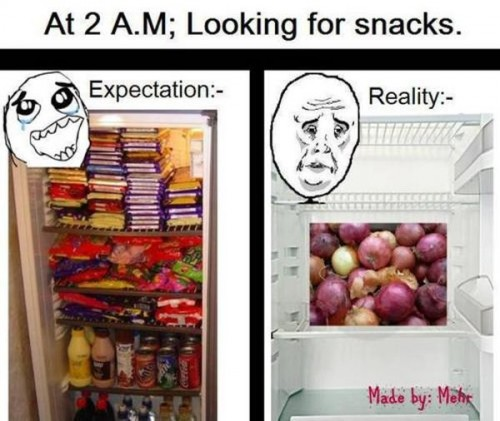 at 2am looking for snacks 500x421 at 2am looking for snacks