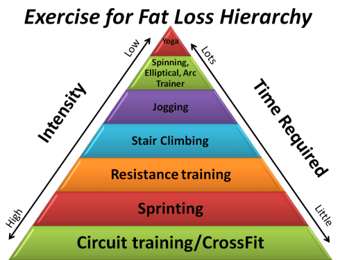 exercise for fat loss hierarchy exercise for fat loss hierarchy