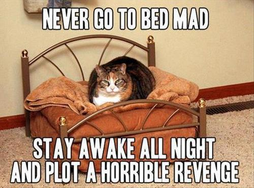 never go to bed mad never go to bed mad