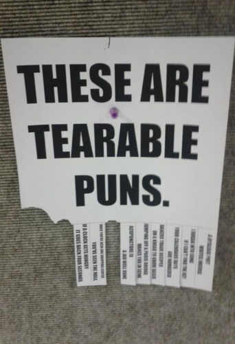 these are tearable puns 342x500 these are tearable puns