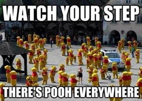 watch yoru step theres pooh everywhere watch yoru step theres pooh everywhere
