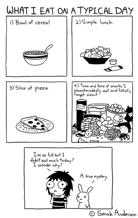 What I eat on a typical day What I eat on a typical day