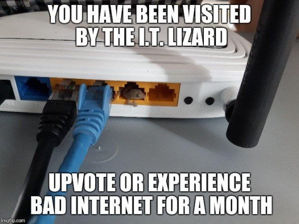 you have been visited by the IT Lizard you have been visited by the IT Lizard