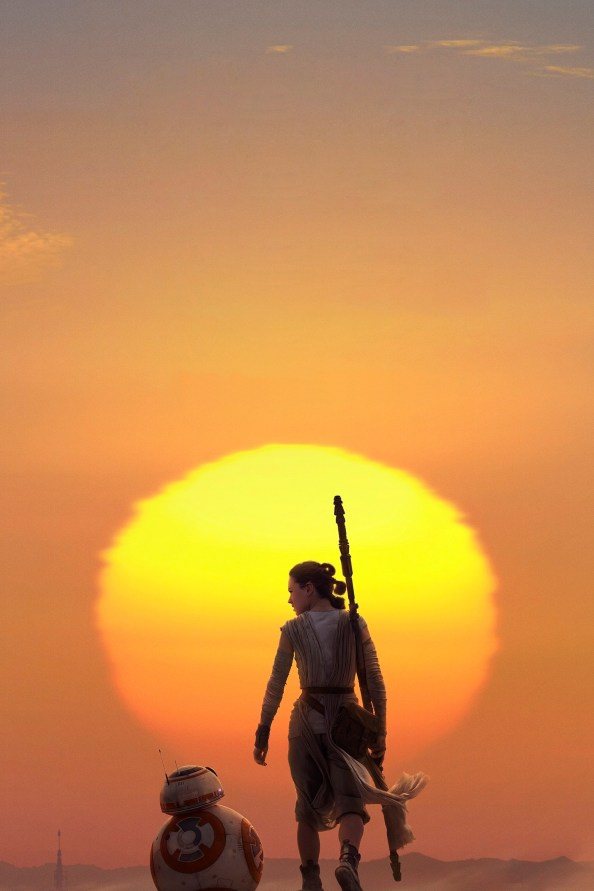 Rey and BB-8 walking into the sunset