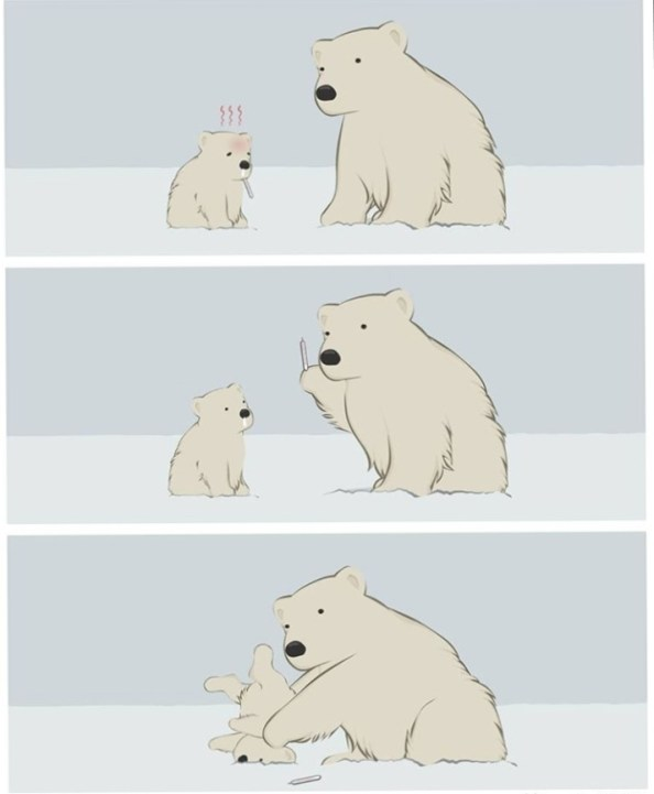 polar bear fever
