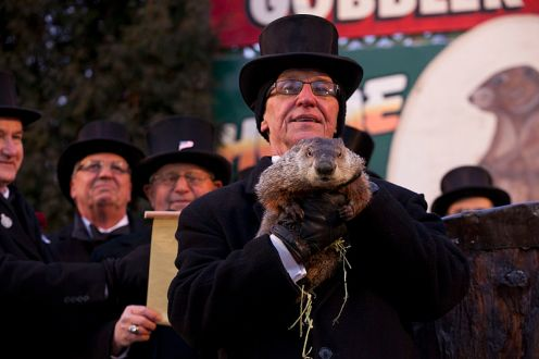 Groundhog Day Means Phil