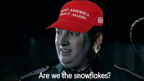 are we the snowflakes