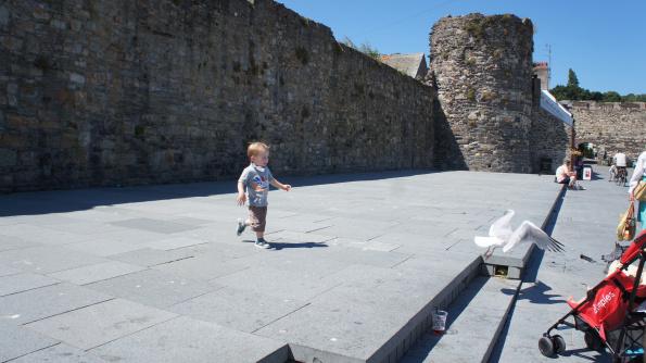 garotinho e gaivota brincando proxima ao Pub