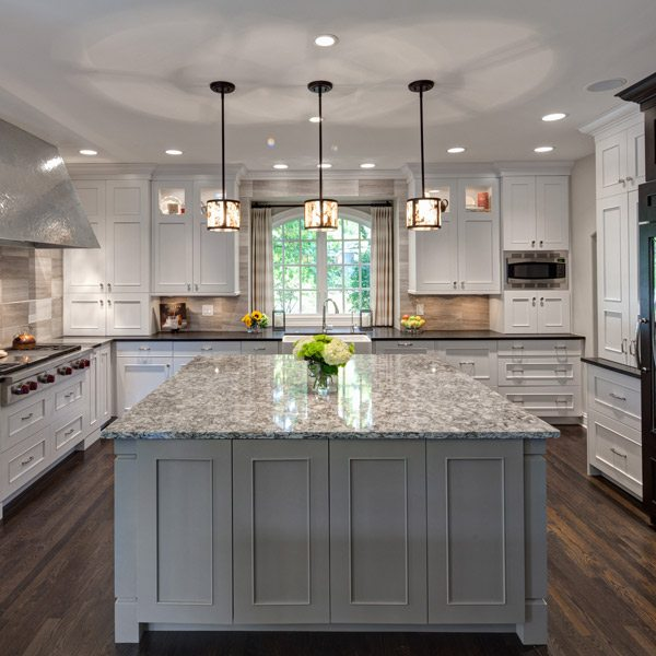 Great Multi Functional Transitional Hinsdale Kitchen