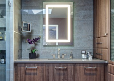 Contemporary Townhome Master Bath