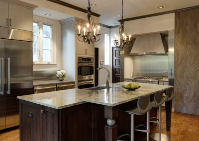 Intriguing Soft Contemporary Glen Ellyn Kitchen Design