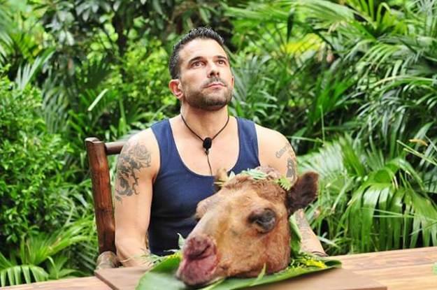 Dschungelkönig Marc Terenzi mit Leibspeise