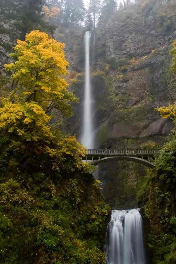Autumn at Multnomah Falls