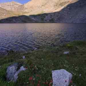 Betty Lake