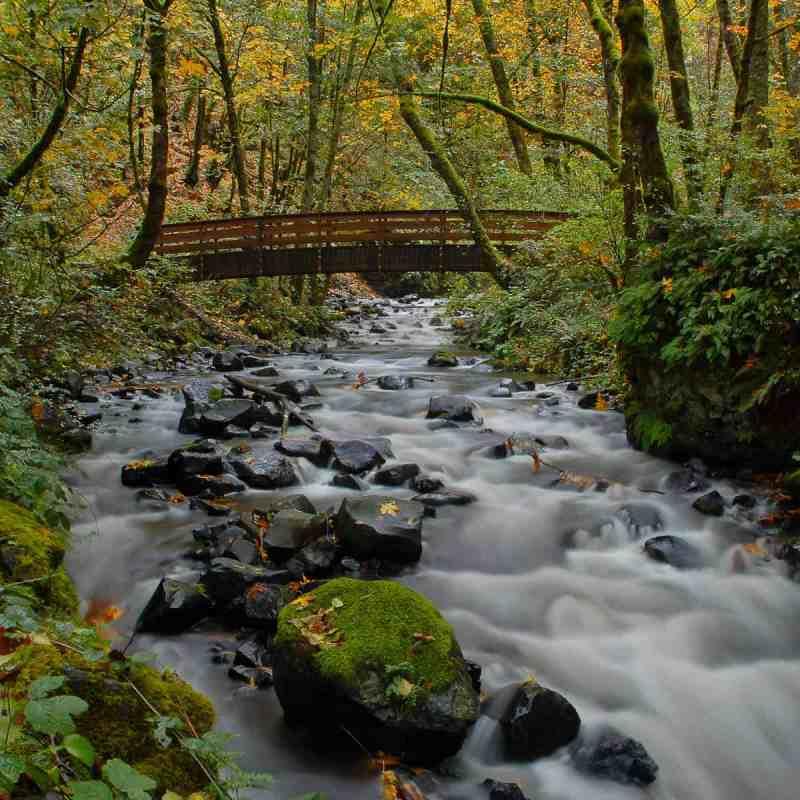 Bridal Veil Creek
