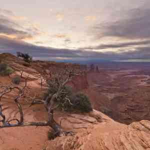 Four Seasons View