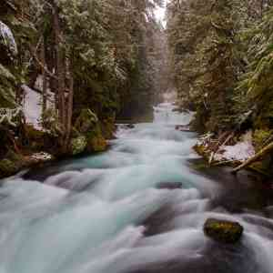 McKenzie River Snow