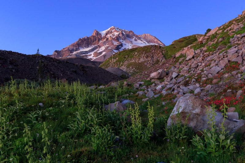 Rugged Mt Hood