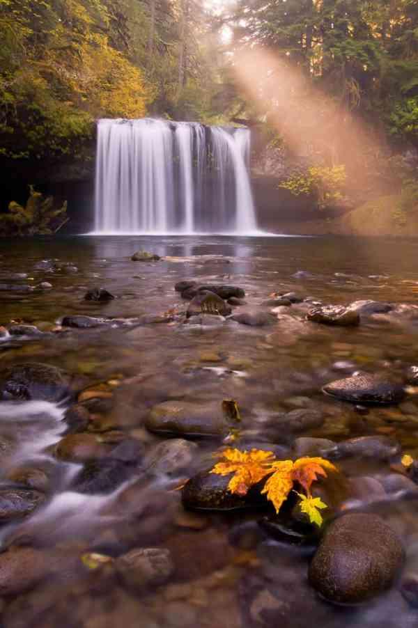 Sunbeam Above Butte Creek Falls