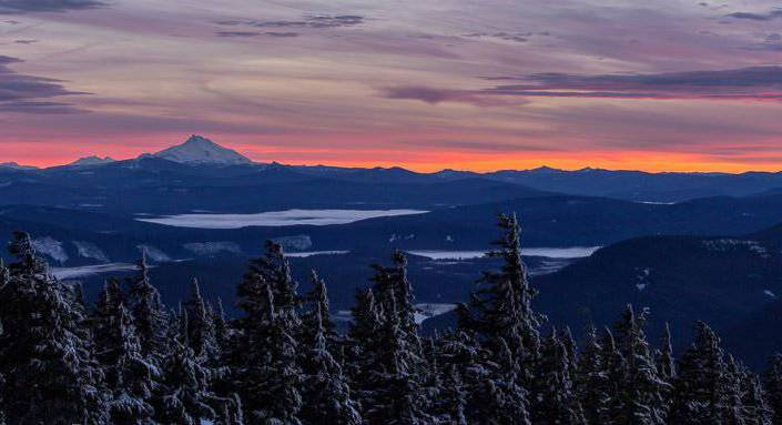 Timberline View