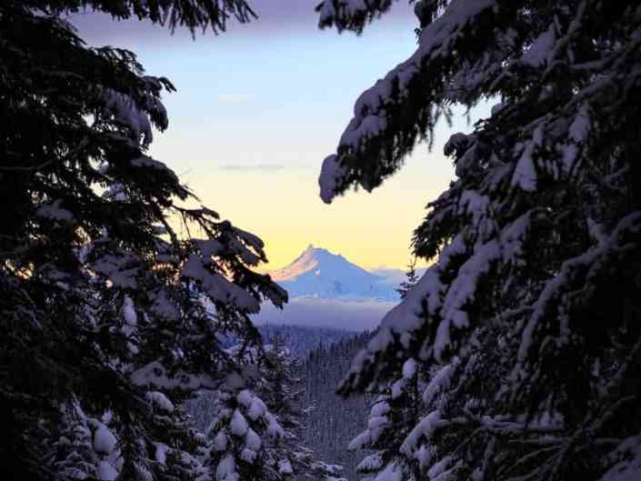Mt Jefferson Through the Snowclad Trees