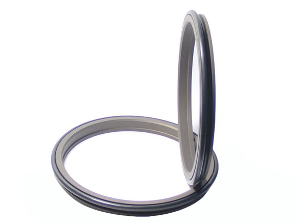 DPR-Cylinder Wiper Ring Dustproof Scraper Seal-detail-02