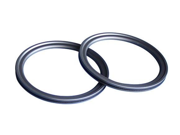 PTD-External Face Spring Energized PTFE seal-detail-03