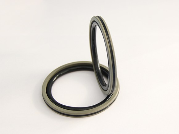 DSH-Professional Piston Seal Piston Ring Supplier-4